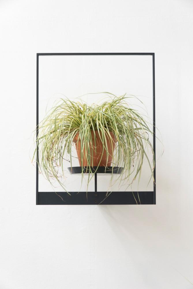 etagere-plante-originale-1